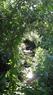 Bowker Creek, Oak Bay