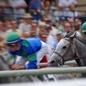 Horse Race Public Domain