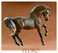 Pedro Resin Andalusian Stallion Sculpted by Debora