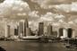 Tampa, Florida Skyline from Davis Island