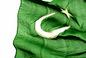 independence day of pakistan, pakis