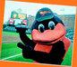 The Orioles Mascot, The Bird