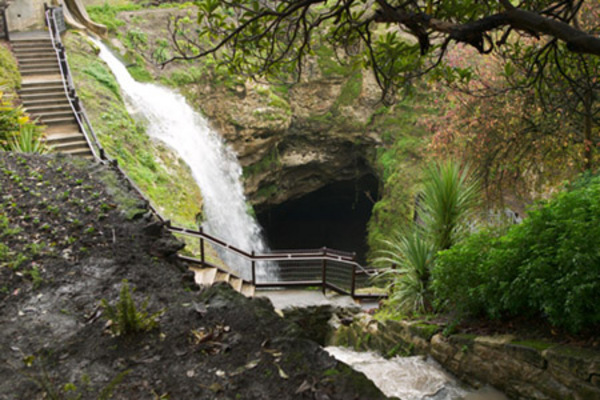 Cave Garden Sinkhole