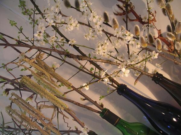 Spring Branch, Texas