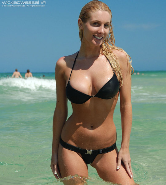 Wicked Weasel Gallery | New Calendar Template Site